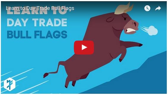 bull-flags-image