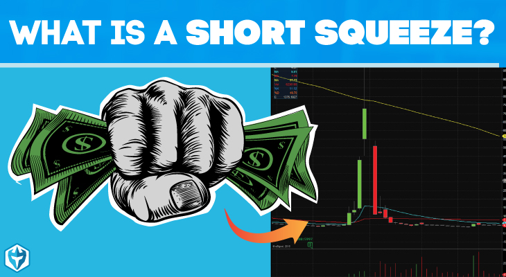Image result for short squeeze pics